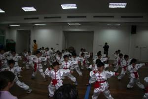 Shanghai 2006. 1 311